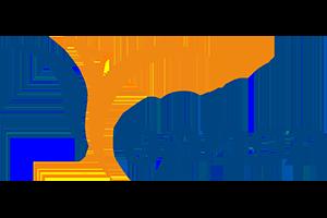 phonix-logo
