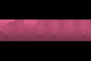 saloona-logo